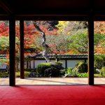 Sake was born in Nara prefecture